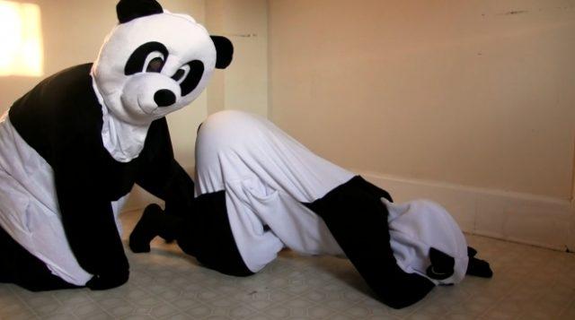 パンダもAV見るだと!?シャンシャンの誕生がよく分かるPornhubが作ったパンダ用エロ動画。のサムネ
