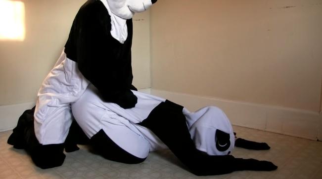 パンダ用AVの画像2