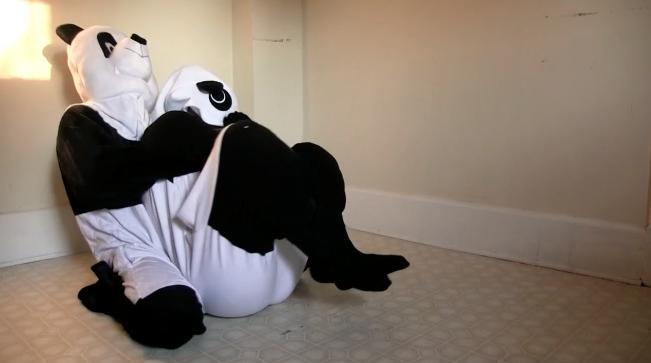 パンダ用AVの画像4