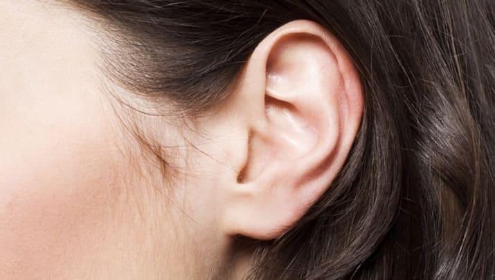 耳・鼻の下でわかる名器画像